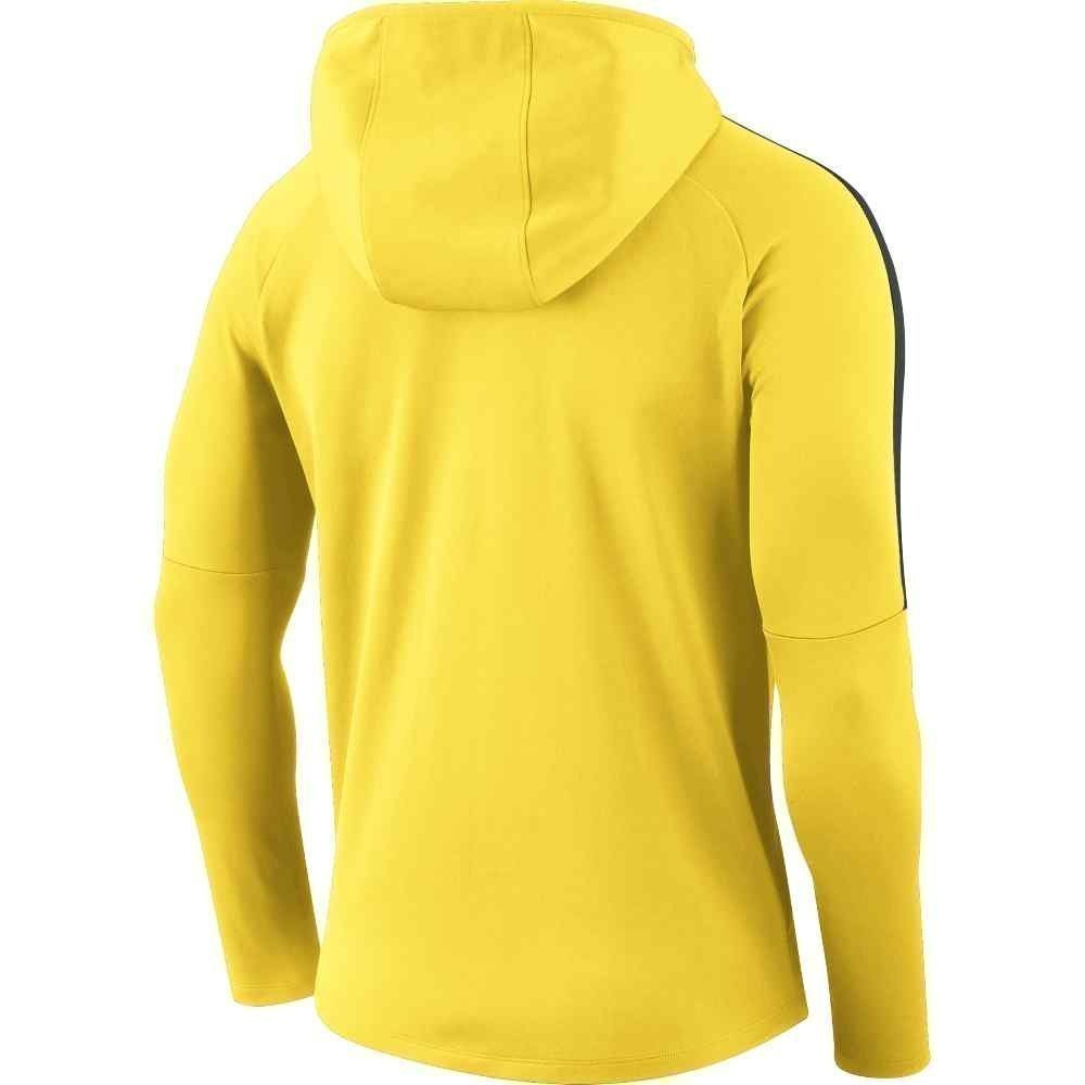 Youth's Nike Academy 18 Hoody