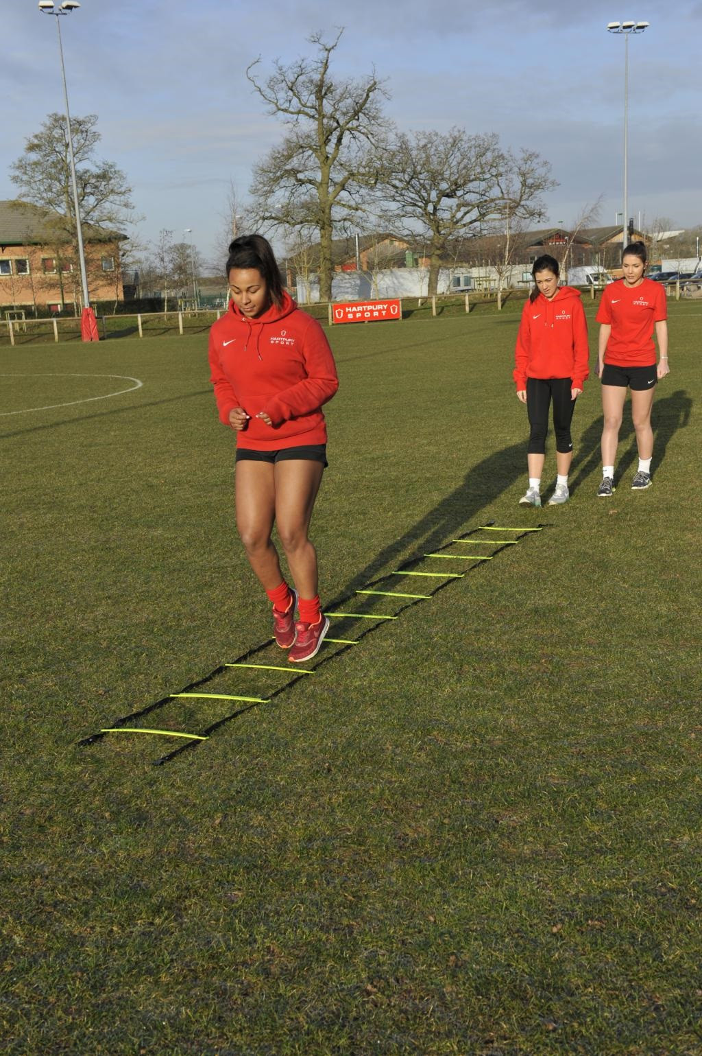 Central Round Rung Agility Ladders