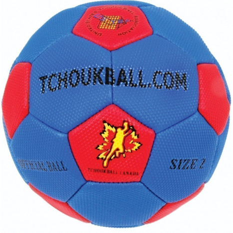 Sure Shot Official Tchoukballs Handball
