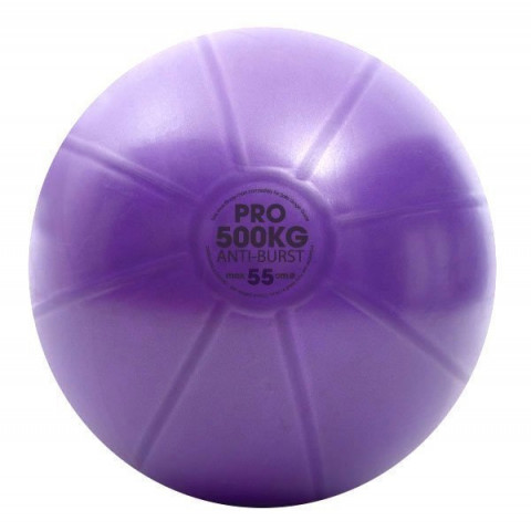 Fitness Mad Studio Pro Swiss Ball