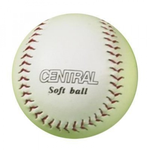 Central Training Softball